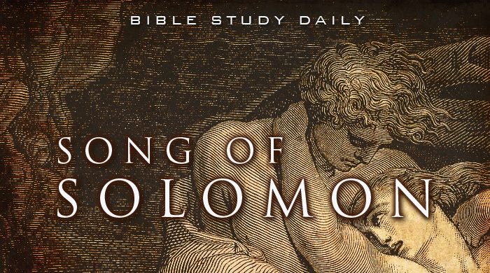 Bsd Old Testament Notes Bible Study Daily