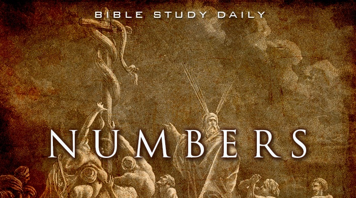 Bible numbers 22 summary of the book